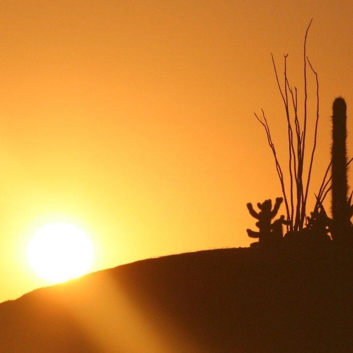 Il deserto del battista