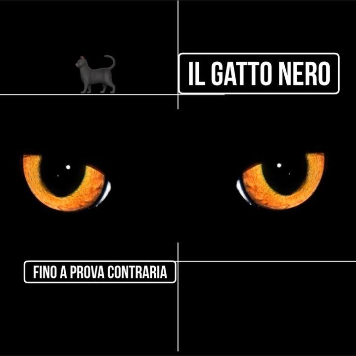 Il gatto nero- Aridaje