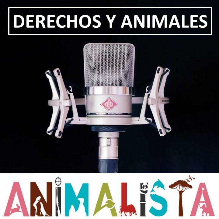 Ley de Microchip para Animales