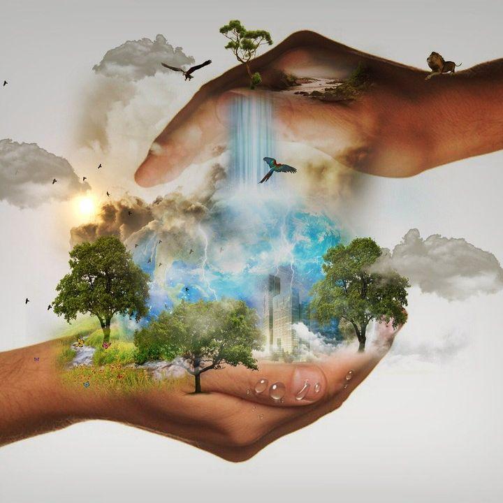 Laudato Sì: l'ecologia al servizio del bene comune