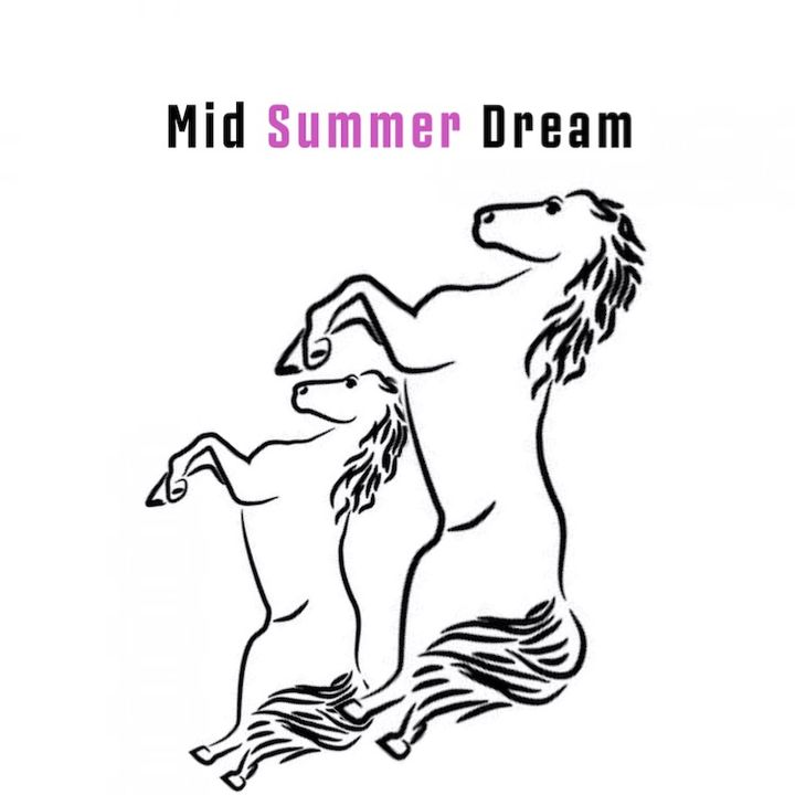 Mid Summer Dream Podcast
