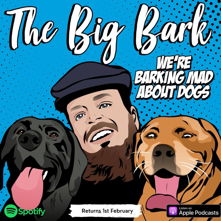 The Big Bark Dog podcast #31 Leash anxiety - Help your anxious dog have a relaxing walkies with Samantha Rawson