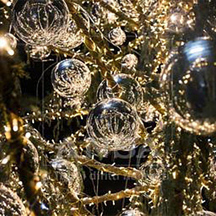 L'albero di Natale, quel simbolo dalle origini misteriose