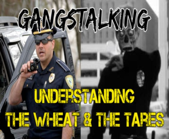 """""""Understanding the Wheat and the Tares"""" [Gangstalking: It's BIBLICAL - Mathew 13]"""