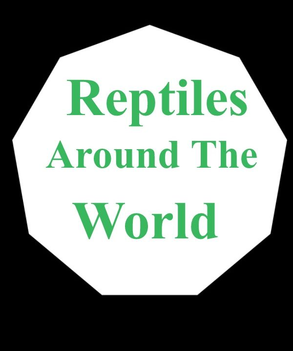 Reptiles around the world episode 3
