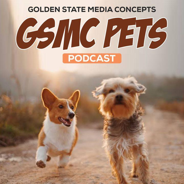 GSMC Pets Podcast Episode 50: Reptilian Pets