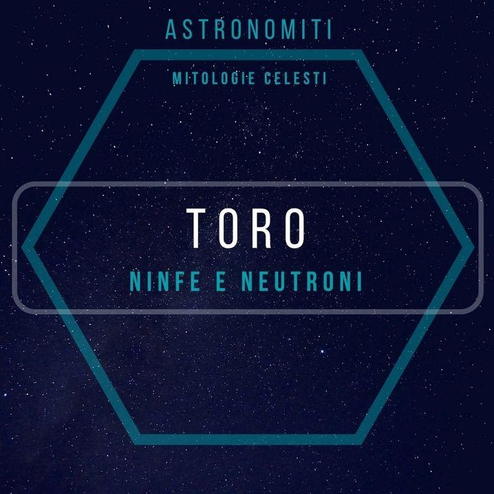 Ep. 15. Il Toro. Ninfe e Neutroni.