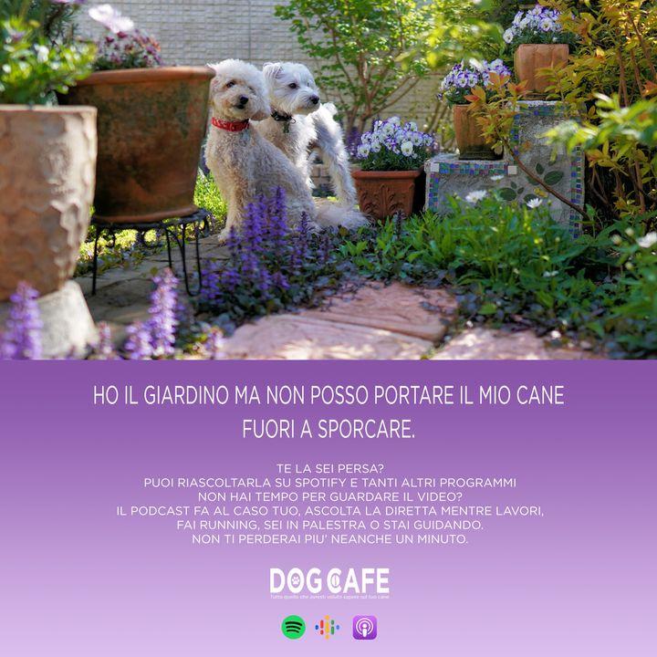#055 - Ho il giardino ma non posso portare il mio cane fuori a sporcare.