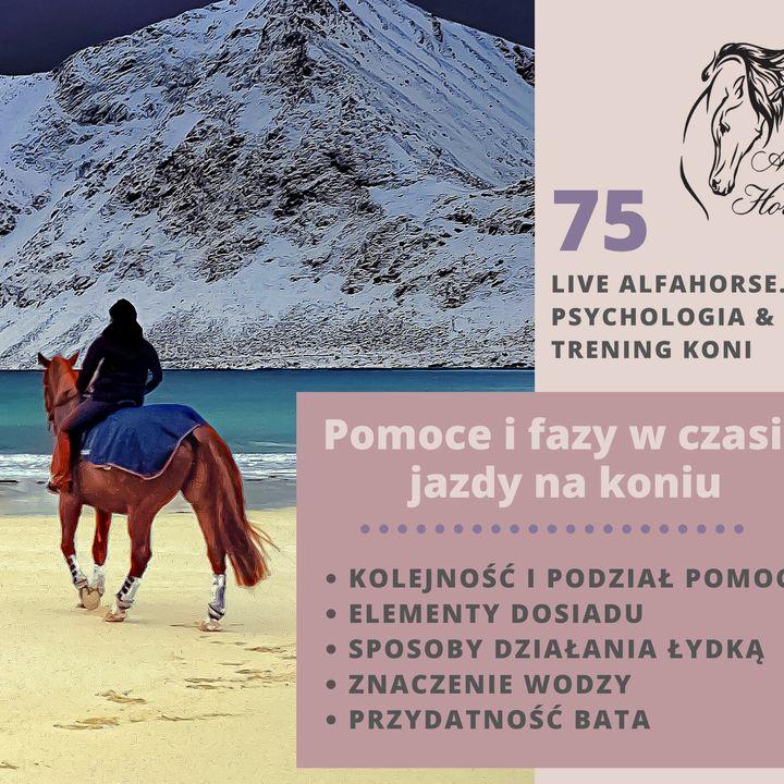 Live 75: Pomoce i fazy w czasie jazdy na koniu