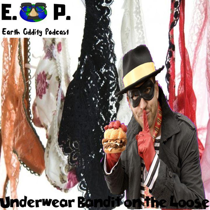 Earth Oddity 58: Underwear Bandit on the Loose