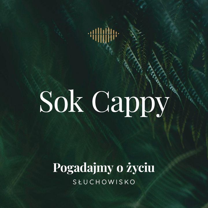 89. Sok Cappy