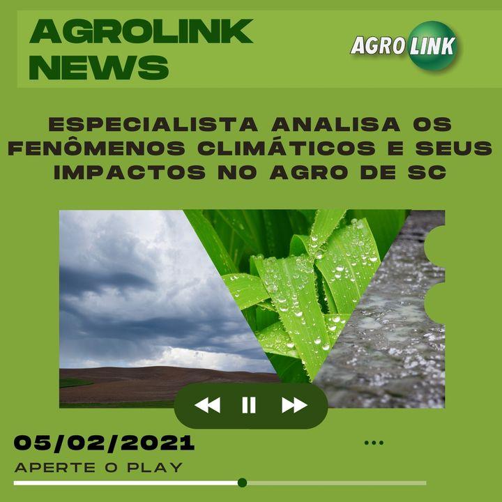 Agrolink News - Destaques do dia 05 de fevereiro