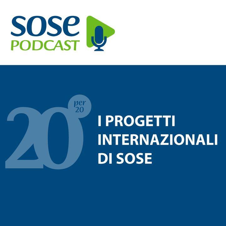 L'internazionalizzazione di SOSE