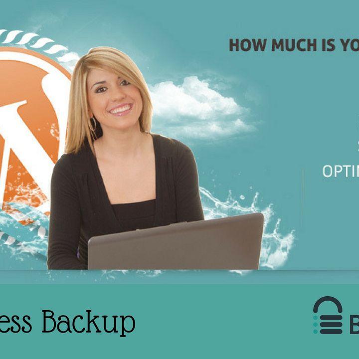 Major Types of WordPress Backup