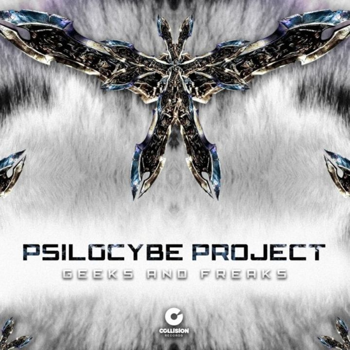 Psilocybe Project - Fear and Desire