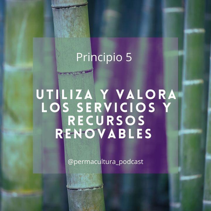 T1E10 - Principio 5 Utiliza y valora los servicios y recursos renovables