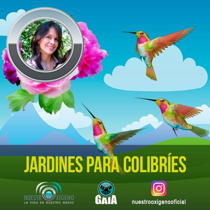 NUESTRO OXÍGENO Jardines para colibríes en la ciudad de las aves - Wendy Vidalh