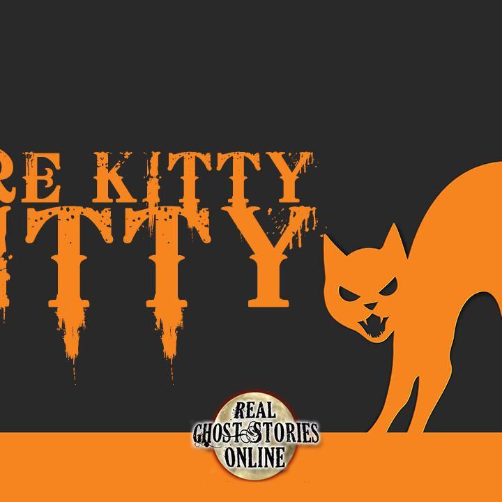 Here Kitty, Kitty   RGSO Flashback