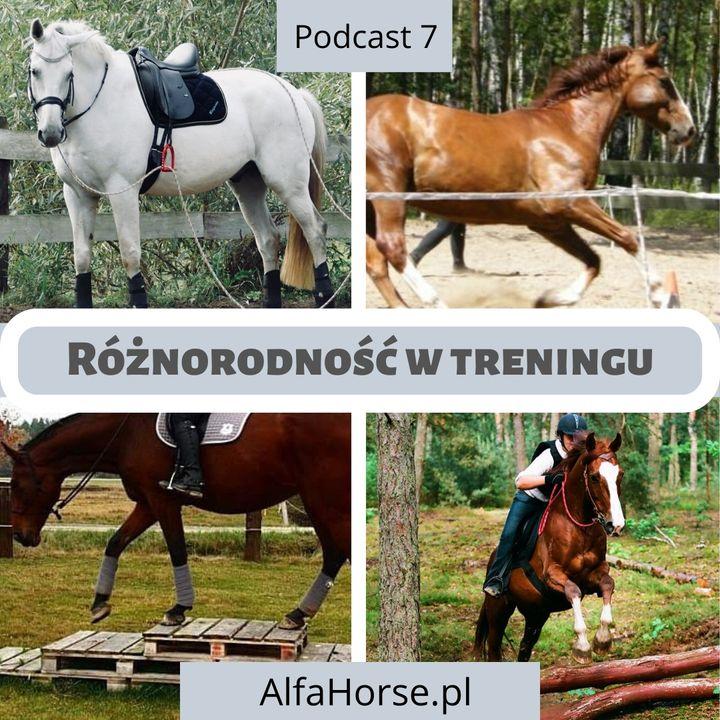 Podcast 7: Różnorodność w treningu koni