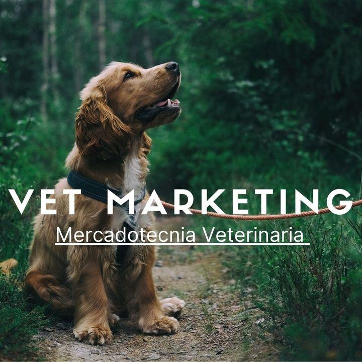 Artículos básicos para tu veterinaria o pet shop