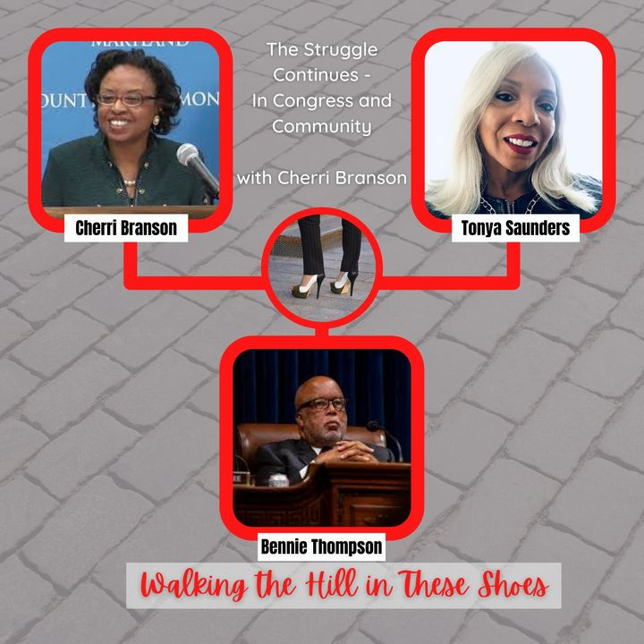 Episode 2 - The Struggle Continues in Congress and Community with Cherri Branson