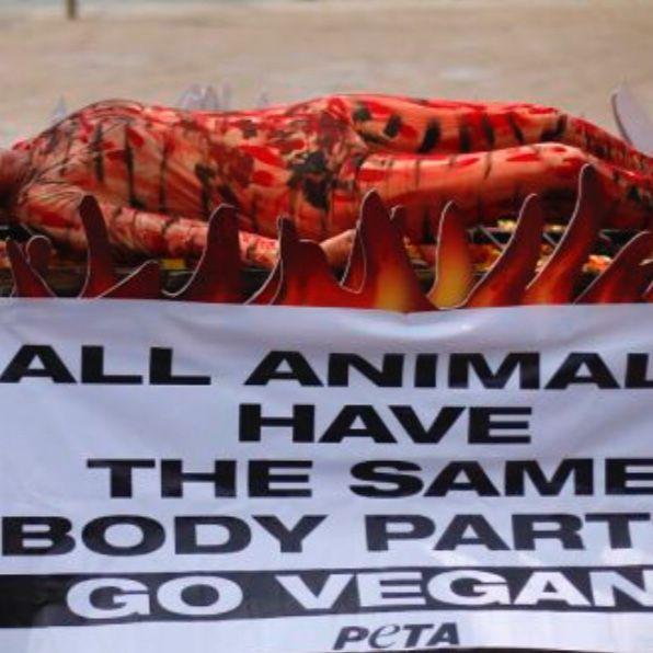 PETA Suggests Humans Are Below Animals
