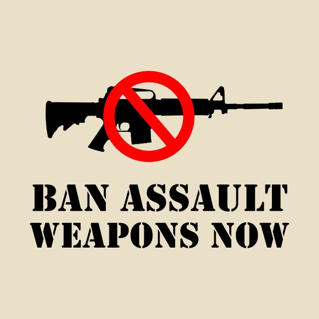 Sun Sentinel Editorial Board on Assault Weapons Ban Petition +