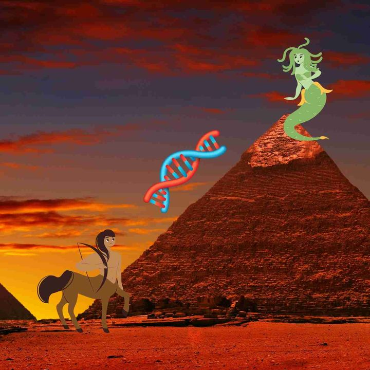 Biologists Just Got Closer to The DNA Secrets That Stop Species From Interbreeding! So What's Next?