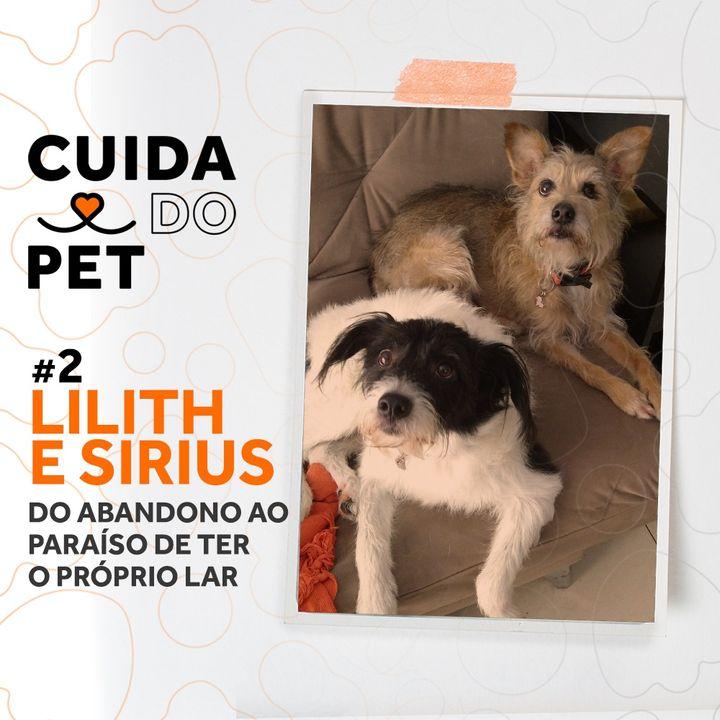 #2 Lilith e Sirius   Do abandono ao paraíso de ter o próprio lar