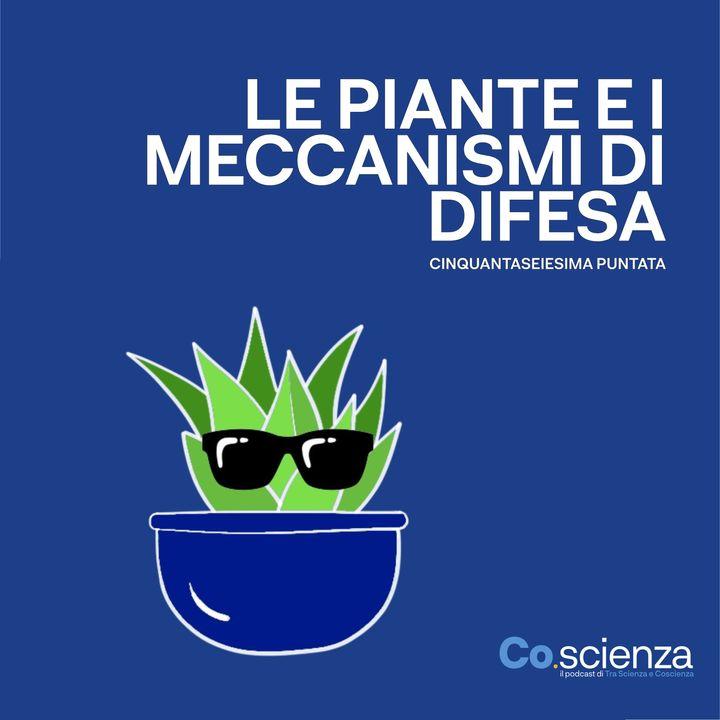 Le piante e i meccanismi di difesa (Cinquantaseiesima Puntata)