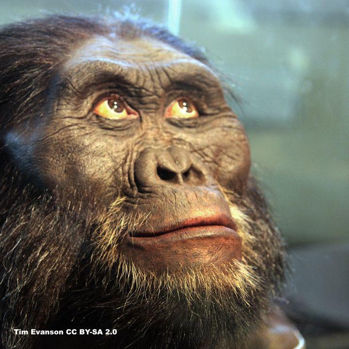 Why Evolution Matters (Evolution Pt 1)