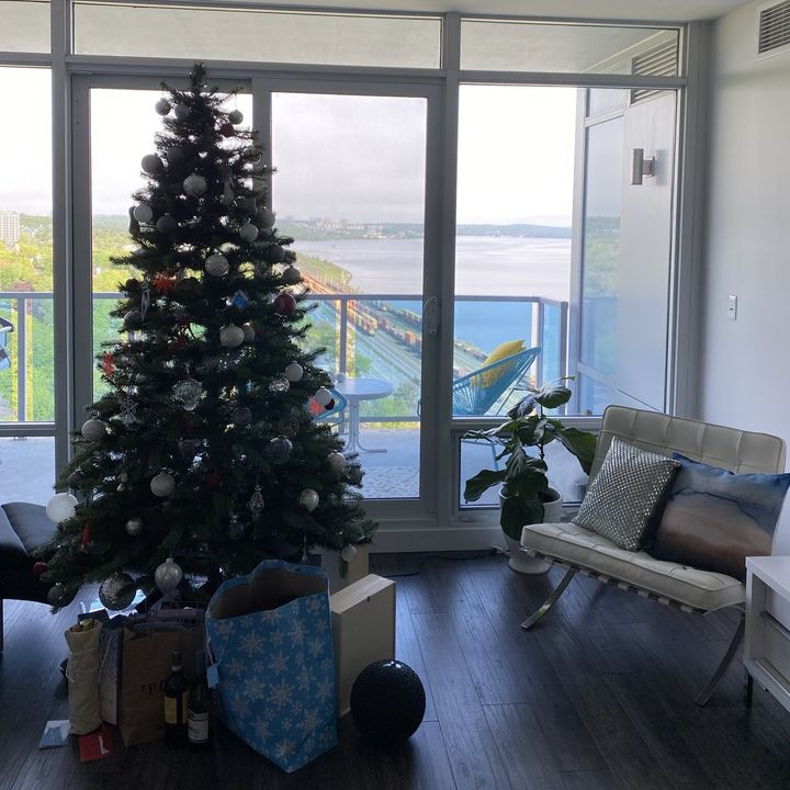 Dr Lisa Barrett on back to school, Phase 5 and her Christmas Tree