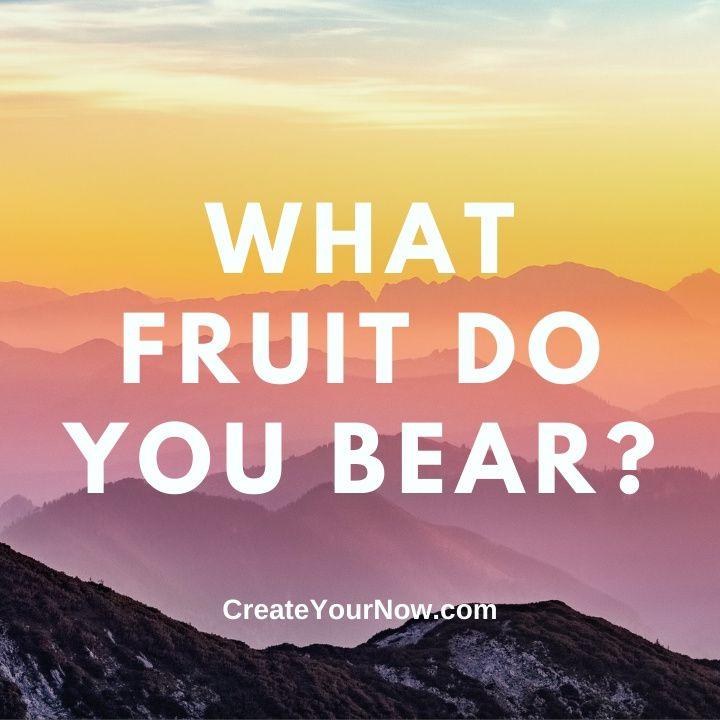 2438 What Fruit Do You Bear?