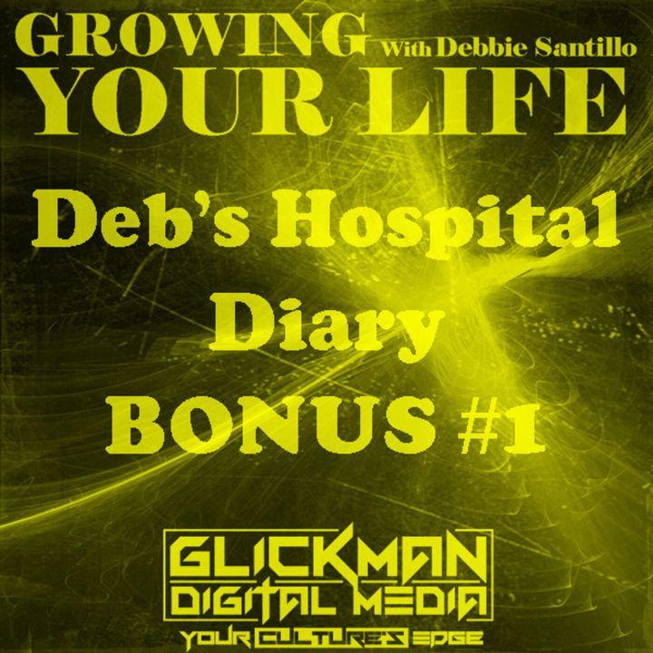 Deb's Hospital Diary