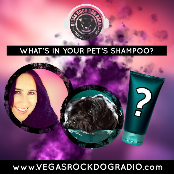 Is Your Pet's Shampoo Doing More Harm Than Good?