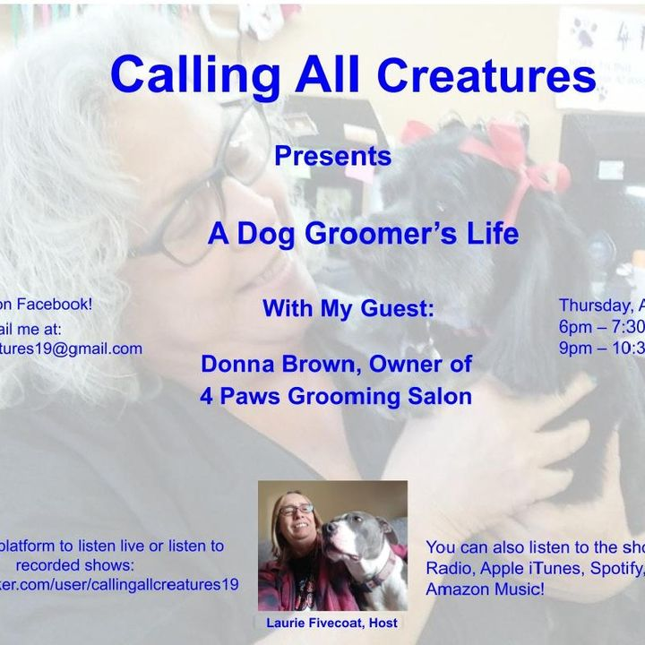 Calling All Creatures Presents A Dog Groomer's Life