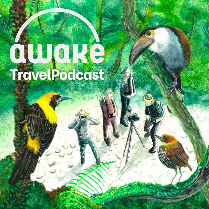 Episodio Especial: Awake - Eje Cafetero