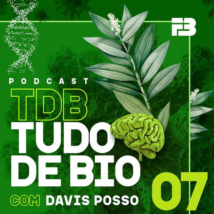 TDB Tudo de Bio 007 - O leite de soja