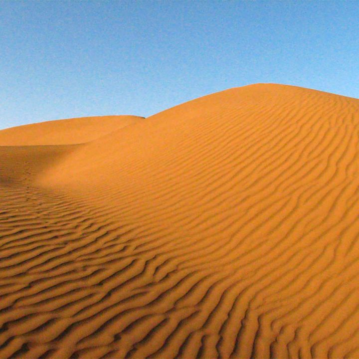 Khutbah: Patience Through Trying Times