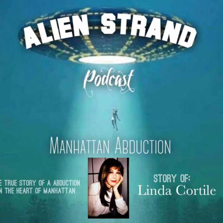 #13 The Manhattan Abduction (Linda Cortile story)