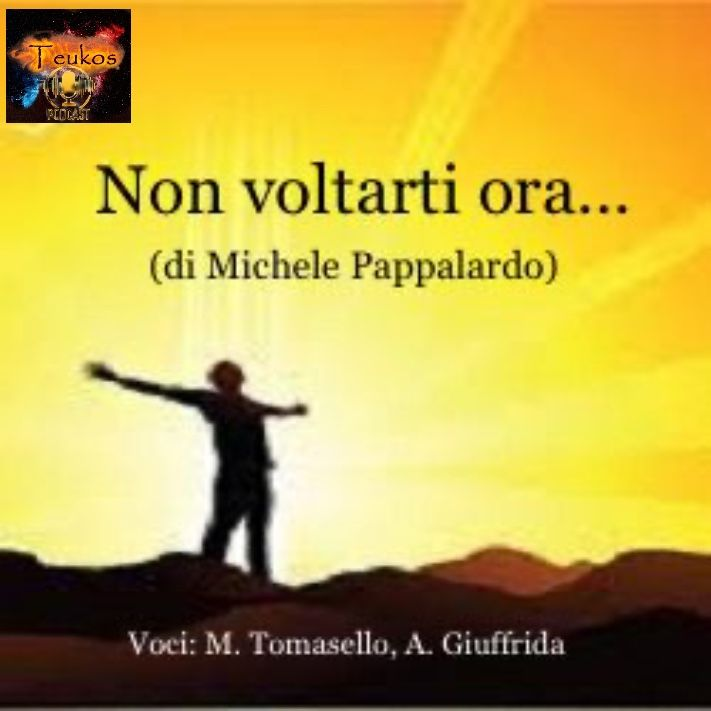 Non voltarti ora... (di Michele Pappalardo)