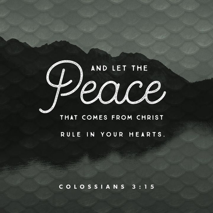 Let Peace Be Your Umpire