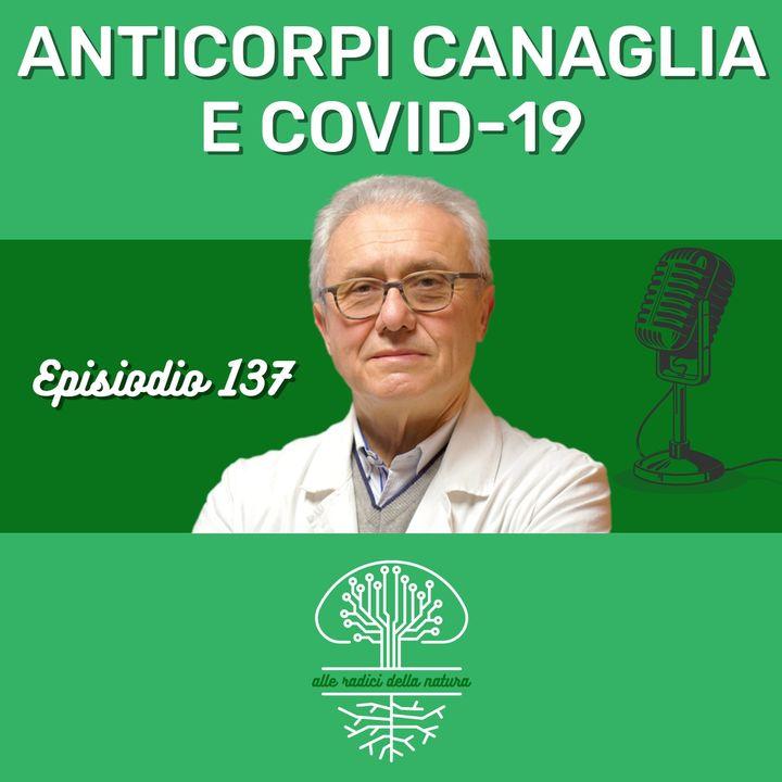 Anticorpi Canaglie e Covid-19