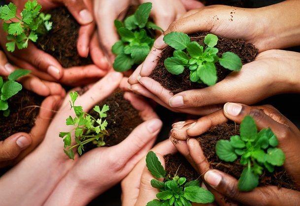 #castelguelfo Eco-friendly?