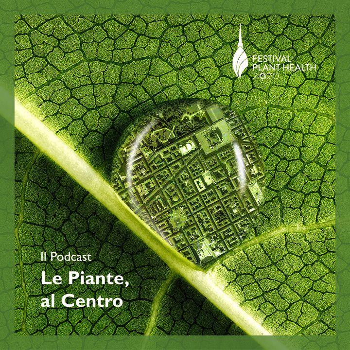 Le Piante, al Centro.