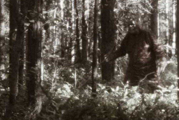 Episode 36 The Fouke Monster and his Opossum Friends