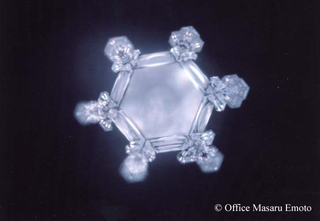 The Great Day of Love and Gratitude 2017 - The Masaru Emoto's Experiments