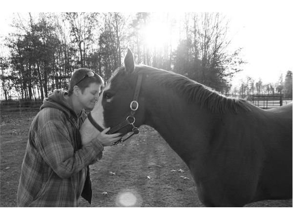 Horse Drawn Insights With Kristi Rockley
