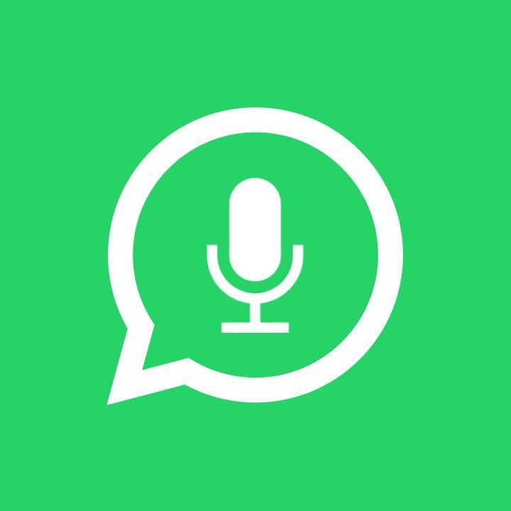 Messaggi vocali sì, messaggi vocali no