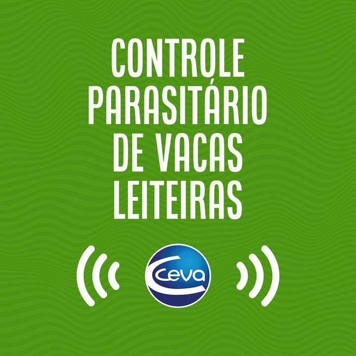 Controle parasitário #02 A importância do controle parasitário no gado leiteiro